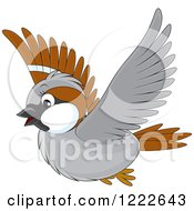 Clipart Of A Cute Flying Brown And Gray Sparrow Bird Royalty Free Vector Illustration