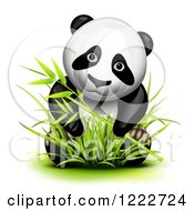 Clipart Of A Cute Panda In Bamboo Royalty Free Vector Illustration