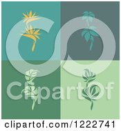 Bird Of Paradise And Tropical Plants On Different Backgrounds