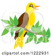 Clipart Of A Cute Oriole Bird Perched On A Branch Royalty Free Vector Illustration