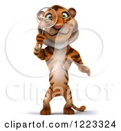 Clipart Of A 3d Tiger Mascot Looking Through A Magnifying Glass Royalty Free Illustration