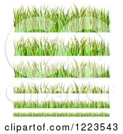 Clipart Of Grass And Daisy Flower Borders Royalty Free Vector Illustration by vectorace