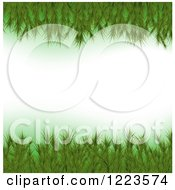 Clipart Of A Border Of Fir Christmas Tree Branches Royalty Free Vector Illustration