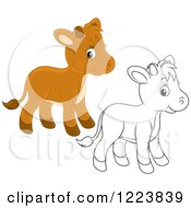Clipart Of Outlined And Colored Cute Baby Calf Cows Royalty Free Vector Illustration