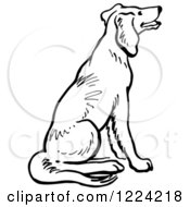 Clipart Of A Black And White Happy Sitting Dog Royalty Free Vector Illustration