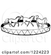 Clipart Of A Black And White Horse Circus Show Royalty Free Vector Illustration