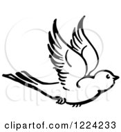 Clipart Of A Black And White Flying Bird Royalty Free Vector Illustration