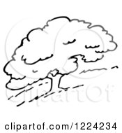 Clipart Of A Black And White Hillside Tree Royalty Free Vector Illustration