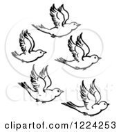 Clipart Of Black And White Five Flying Birds Royalty Free Vector Illustration