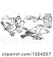 Clipart Of Black And White Children Watching Birds In A Park Royalty Free Vector Illustration