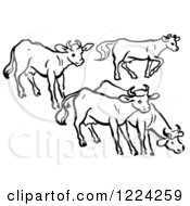 Clipart Of Black And White A Group Of Cows Royalty Free Vector Illustration