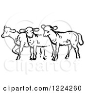 Clipart Of Black And White A Group Of Sheep Royalty Free Vector Illustration