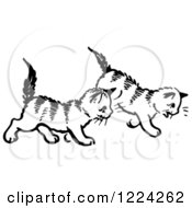 Clipart Of Black And White Two Kittens Walking Royalty Free Vector Illustration