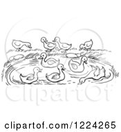 Clipart Of A Black And White Pond With Ducks Royalty Free Vector Illustration