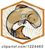 Clipart Of A Leaping Brown Trout Over Rays In A Hexagon Royalty Free Vector Illustration