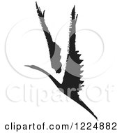 Clipart Of A Black And White Ink Flying Swan Or Albatross Royalty Free Vector Illustration by xunantunich