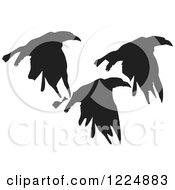 Clipart Of Black Ink Flying Crows Royalty Free Vector Illustration by xunantunich