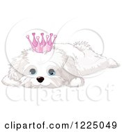 Clipart Of A Cute Spoiled Bichon Frise Or Maltese Puppy Dog Resting And Wearing A Crown Royalty Free Vector Illustration