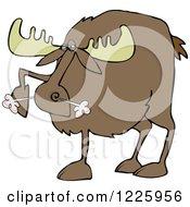 Snorting Angry Moose