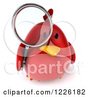 Clipart Of A 3d Chubby Red Bird Using A Magnifying Glass Royalty Free Illustration