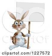 Brown Bunny Rabbit Holding A Sign