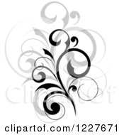 Clipart Of A Black Flourish With A Shadow Royalty Free Vector Illustration