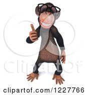 Clipart Of A 3d Chimpanzee Wearing Glasses And Holding A Thumb Up Royalty Free Illustration