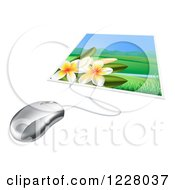 Clipart Of A Computer Mouse Connected To A Photo Of Fangipani Flowers Royalty Free Vector Illustration by AtStockIllustration