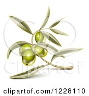Clipart Of A Branch With Green Olives And Leaves Royalty Free Vector Illustration