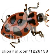 Clipart Of A Spotted Beetle Royalty Free Vector Illustration by dero