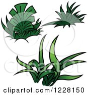 Clipart Of Green Grass And Plants Royalty Free Vector Illustration by dero
