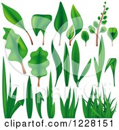 Clipart Of Green Grass Leaves And Plants Royalty Free Vector Illustration by dero