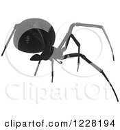 Clipart Of A Southern Black Widow Spider Royalty Free Vector Illustration by dero