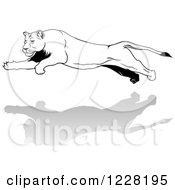 Clipart Of A Black And White Leaping Lioness Royalty Free Vector Illustration by dero