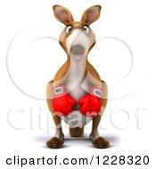 3d Boxer Kangaroo