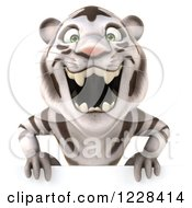 Clipart Of A 3d White Tiger Mascot Roaring Over A Sign Royalty Free Illustration
