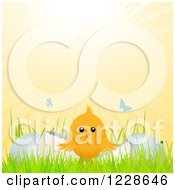 Clipart Of Butterflies And Sunshine Over A Cute Easter Chick And Cracked Eggs Royalty Free Vector Illustration by elaineitalia