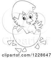 Clipart Of An Outlined Cute Chick Hatching From An Egg Royalty Free Vector Illustration
