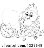 Clipart Of A Cute Black And White Chick Hatching From An Easter Egg Royalty Free Vector Illustration