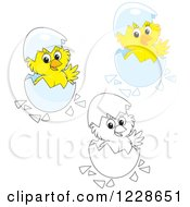 Clipart Of Outlined And Colored Cute Chicks Hatching From Eggs Royalty Free Vector Illustration
