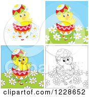 Clipart Of Outlined And Colored Hatching Chicks In Easter Eggs Royalty Free Vector Illustration