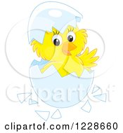 Clipart Of A Cute Chick Hatching From An Egg Royalty Free Vector Illustration