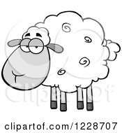 Annoyed Grayscale Sheep