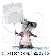 Clipart Of A 3d Surfing Koala Mascot Wearing Sunglasses And Holding A Sign Royalty Free Illustration