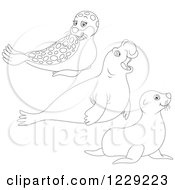 Clipart Of Outlined Cute Seals And Sea Lions Royalty Free Vector Illustration by Alex Bannykh