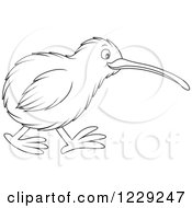 Clipart Of An Outlined Cute Kiwi Bird Royalty Free Vector Illustration