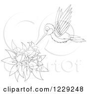 Clipart Of An Outlined Cute Hummingbird Taking Nectar From Flowers Royalty Free Vector Illustration