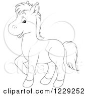 Outlined Cute Pony