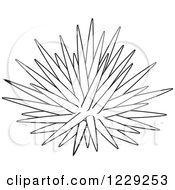 Clipart Of An Outlined Sea Urchin Royalty Free Vector Illustration by Alex Bannykh