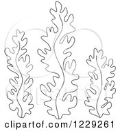 Clipart Of Outlined Seaweed Royalty Free Vector Illustration